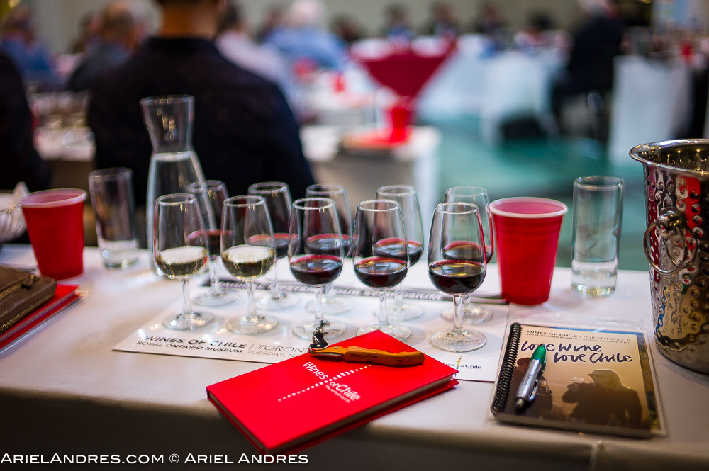 A seat at the Chilean wine seminar on November 1, 2016 for the Love Wine, Love Chile event at the Royal Ontario Museum in Toronto