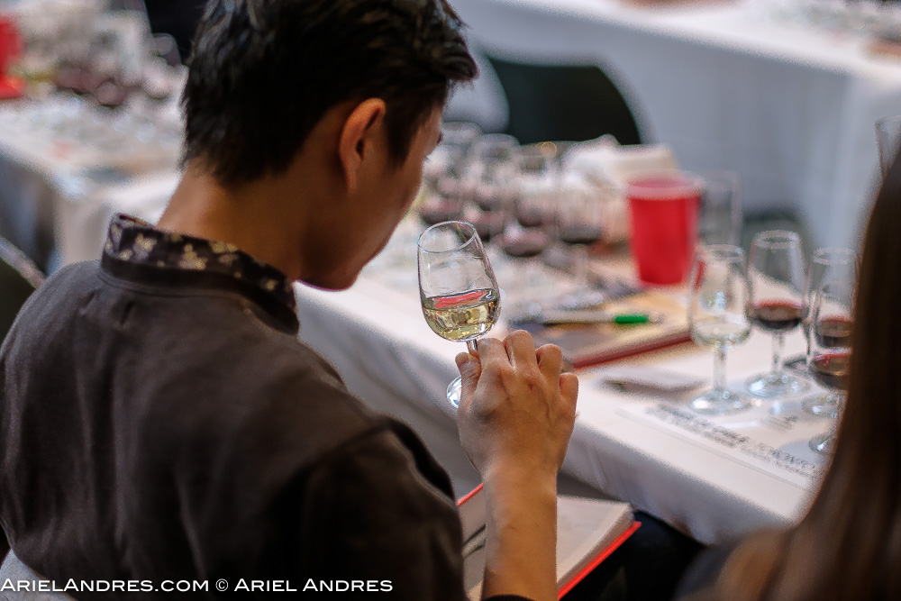 A pro sampling wine during the seminar at Love Wine, Love Chile event at the Royal Ontario Museum in Toronto on November1, 2016.